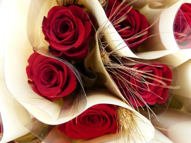 サン・ジョルディの日とは?花と本を贈る由来 2018名古屋のイベント情報